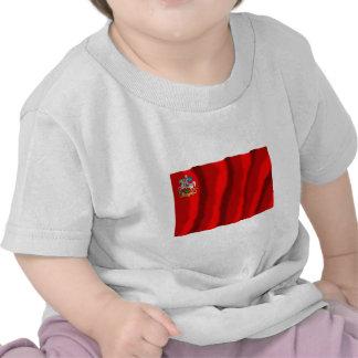 Bandera de Moscú Oblast Camisetas