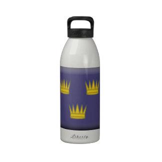 Bandera de Munster (Irlanda) Botellas De Agua Reutilizables