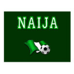 Bandera de Naija de los regalos de las estrellas d Postales