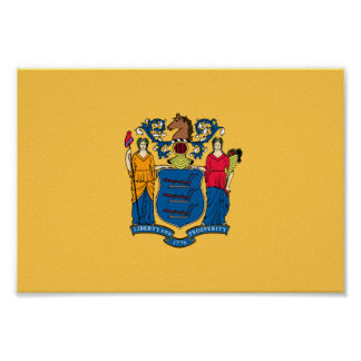 Bandera de New Jersey Póster