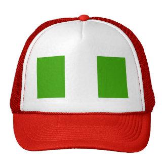 Bandera de Nigeria Gorros