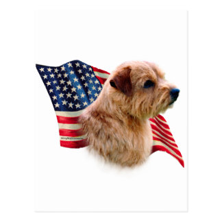 Bandera de Norfolk Terrier Postal