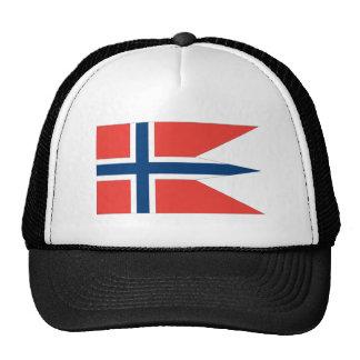 Bandera de Noruega Gorras