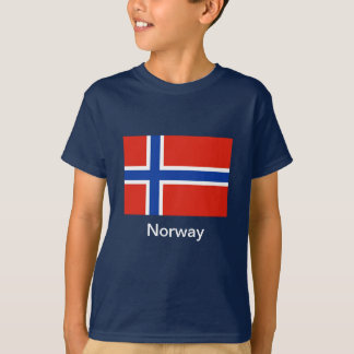 Bandera de Noruega Playera