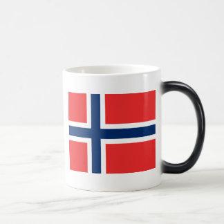 Bandera de Noruega Taza Mágica