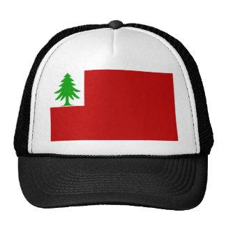 Bandera de Nueva Inglaterra Gorros Bordados