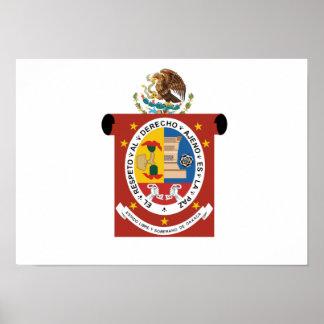 Bandera de Oaxaca Póster