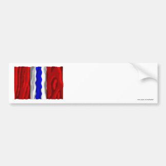Bandera de Omsk Oblast Pegatina Para Auto