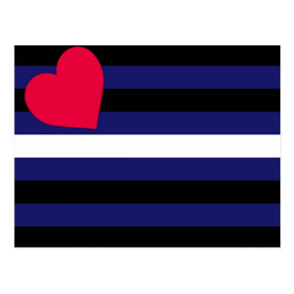Bandera de orgullo de cuero básica tarjetas postales