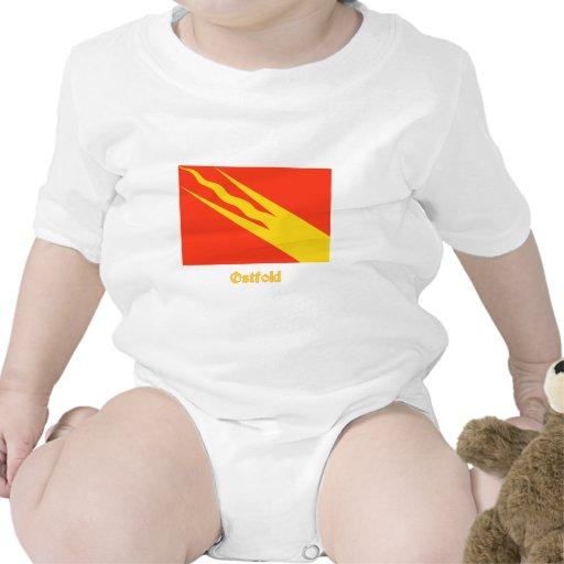 Bandera de Østfold con nombre Trajes De Bebé