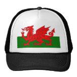 Bandera de País de Gales Gorro