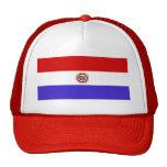 Bandera de Paraguay Gorros Bordados
