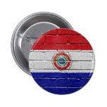 Bandera de Paraguay Pins