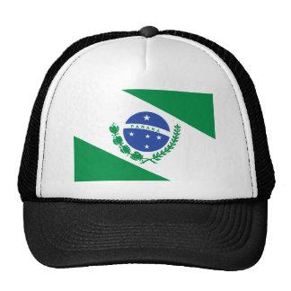 Bandera de Paraná, el Brasil Gorro De Camionero