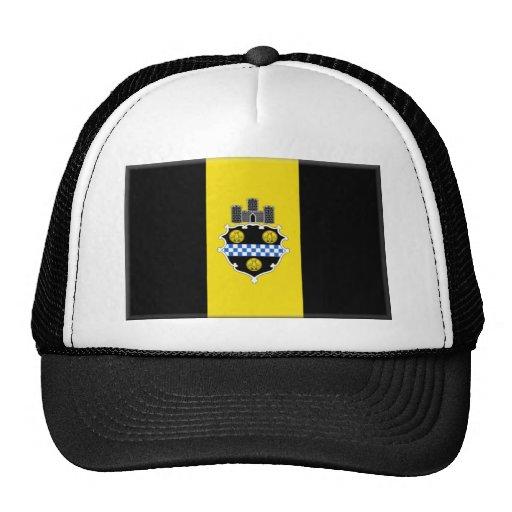 Bandera de Pittsburgh Gorras De Camionero