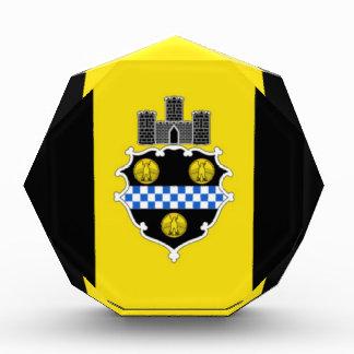 Bandera de Pittsburgh