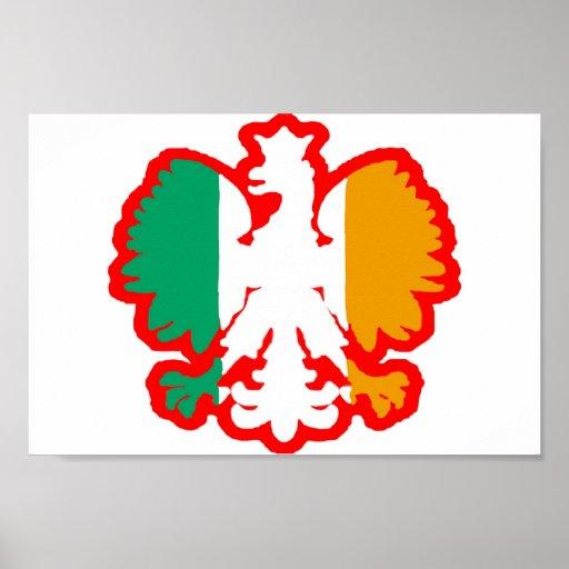 BANDERA DE POLISH/IRISH PÓSTER