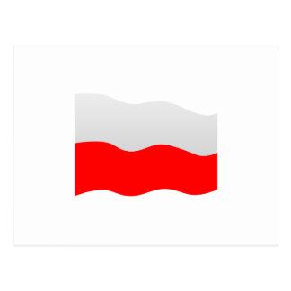 Bandera de Polonia Tarjeta Postal