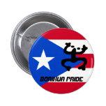Bandera de Puerto Rico y botón de Coqui Pins