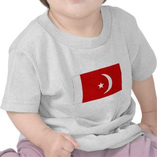 Bandera de Qaiwan del al de United Arab Emirates U Camiseta