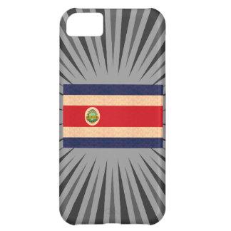 Bandera de Rican de la costa del modelo del vintag