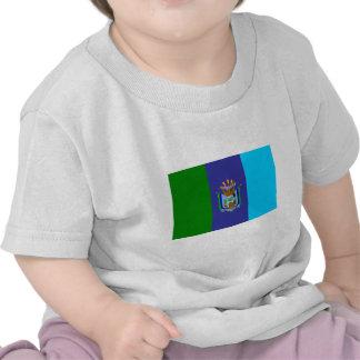 Bandera de Santa Elena Camisetas