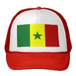 Bandera de Senegal Gorras De Camionero