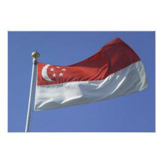 Bandera de Singapur Cojinete