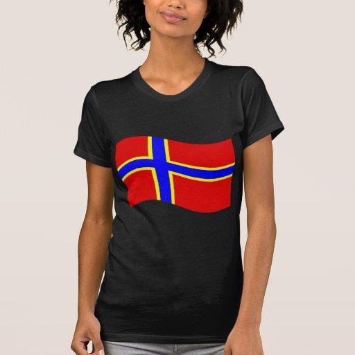 Bandera de Transilvania que agita # 3 Camisetas