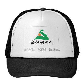Bandera de Ulsan con nombre Gorra