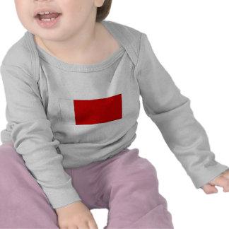 Bandera de United Arab Emirates Ajman Camiseta