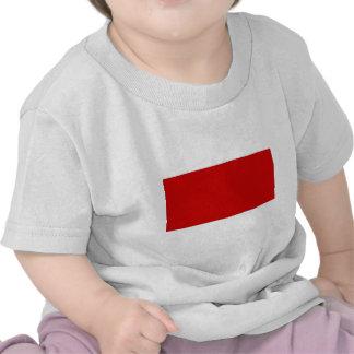 Bandera de United Arab Emirates Fudjairah Camiseta