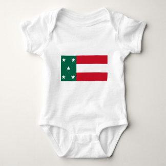 Bandera de Yucatán Poleras