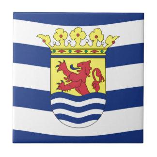 Bandera de Zelanda Azulejo Cuadrado Pequeño