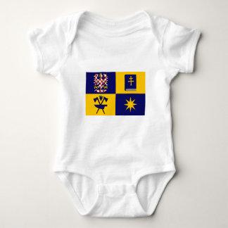 Bandera de Zlín T Shirts