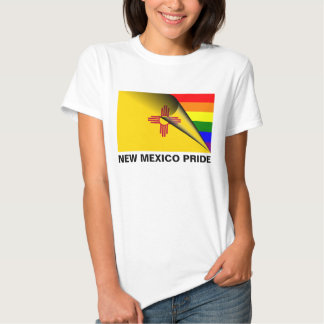 Bandera del arco iris del orgullo LGBT de New Playera
