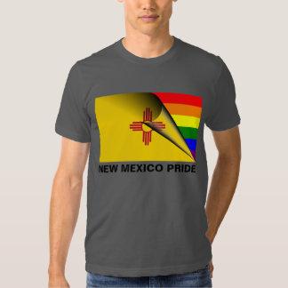 Bandera del arco iris del orgullo LGBT de New Remeras
