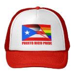 Bandera del arco iris del orgullo LGBT de Puerto Gorras