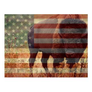 Bandera del bisonte tarjetas postales