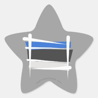 Bandera del cepillo de Estonia Pegatina En Forma De Estrella