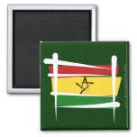 Bandera del cepillo de Ghana Imanes