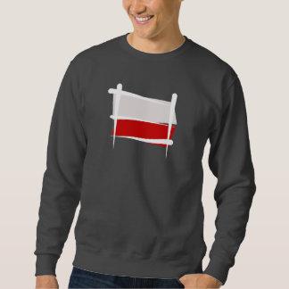 Bandera del cepillo de Polonia Suéter