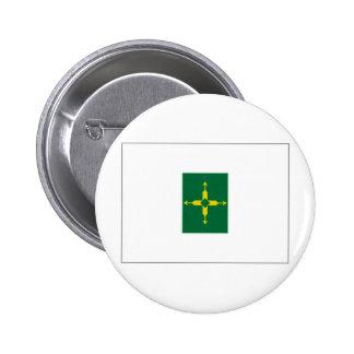 Bandera del distrito federal del Brasil Pin