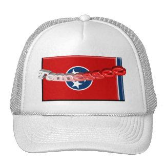 bandera del estado de 3D Tennessee Gorra