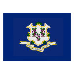Bandera del estado de Connecticut Póster