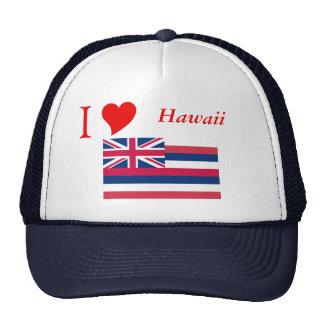 Bandera del estado de Hawaii Gorro