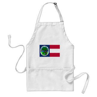 Bandera del estado de la Florida confederado 1861 Delantal