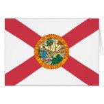 Bandera del estado de la Florida Tarjeta