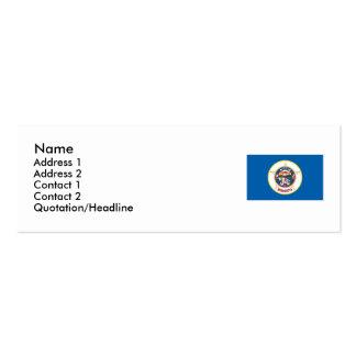Bandera del estado de Minnesota Tarjetas De Visita Mini
