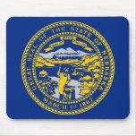 Bandera del estado de Nebraska Alfombrillas De Raton
